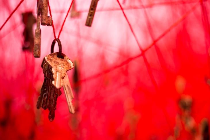 Red series en la biennale 2